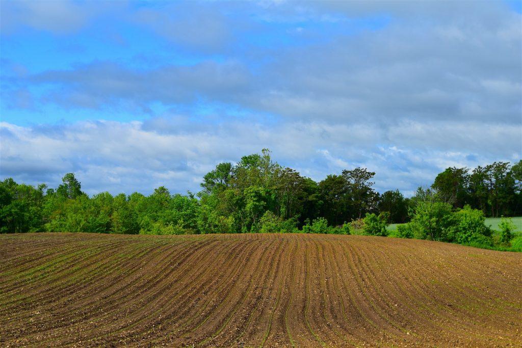 Land und Boden